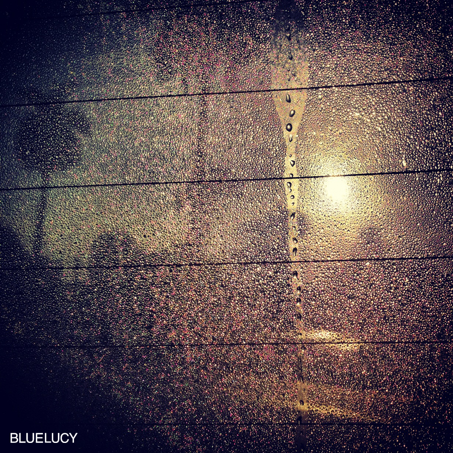MorningDew_Bluelucy