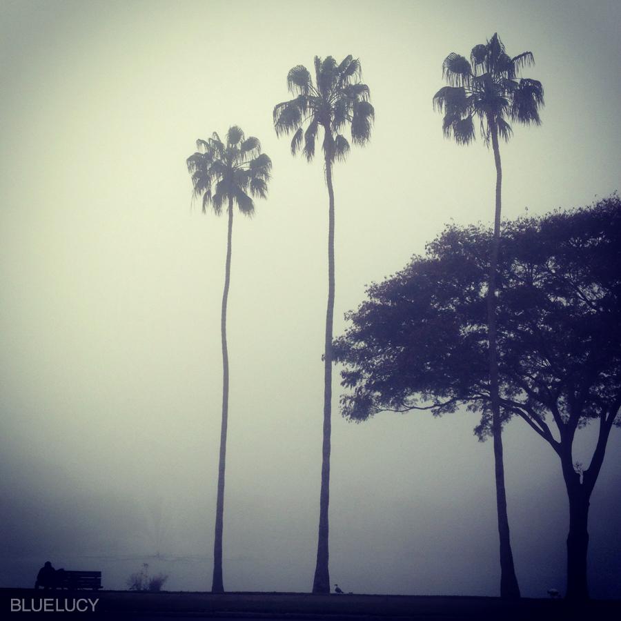 Fog_Mirror_Lake_Bluelucy