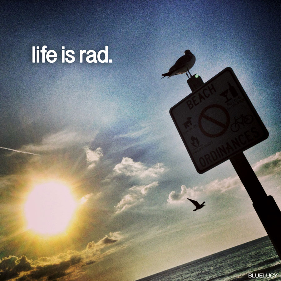 Life_Is_Rad_Bluelucy