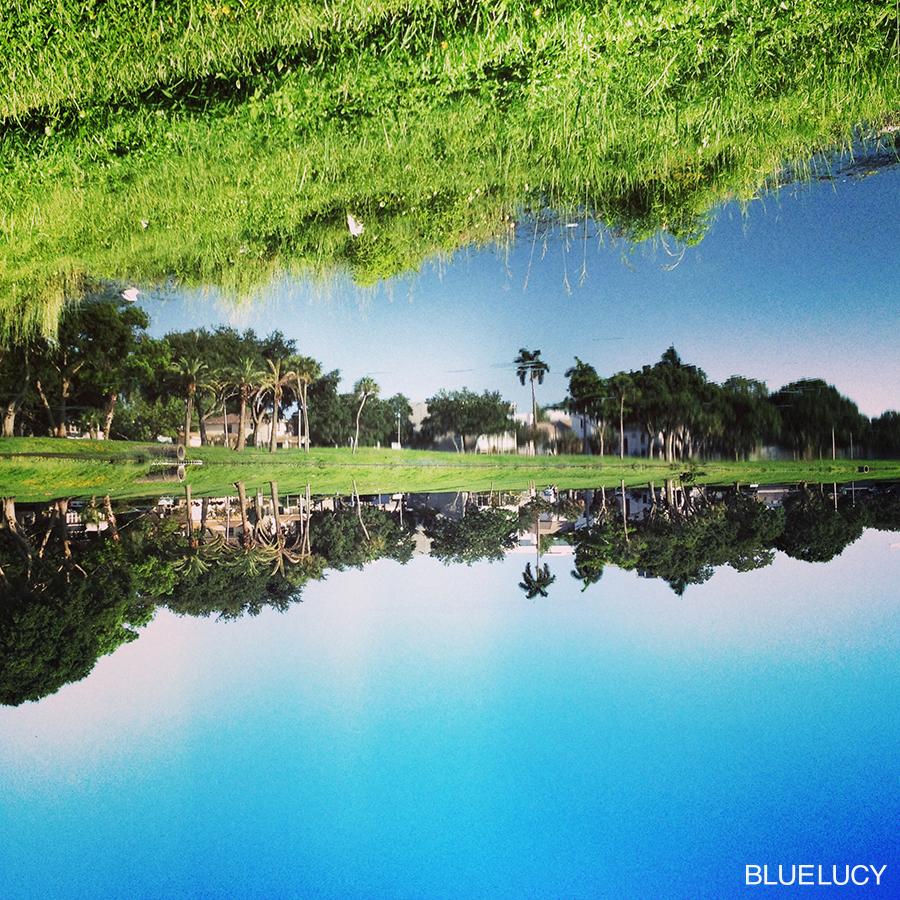 MirrorLake_June17_Bluelucy