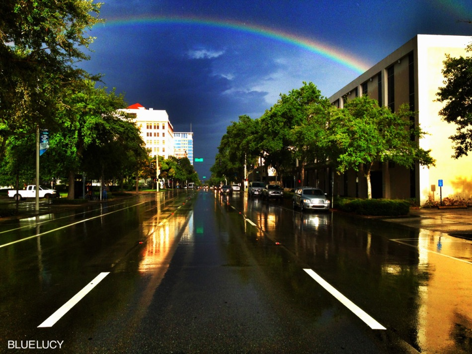 Rainbow_1st_Ave_North_St_Petersburg_Florida_Bluelucy