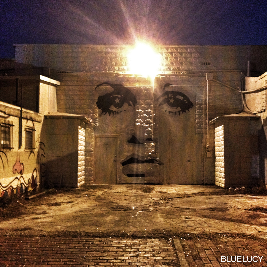 TWIGGY_MURAL_BLUELUCY_600_BLOCK_007
