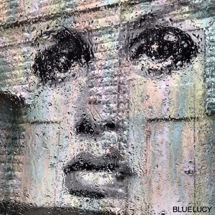 Twiggy_Mural_Bluelucy_Raindrops