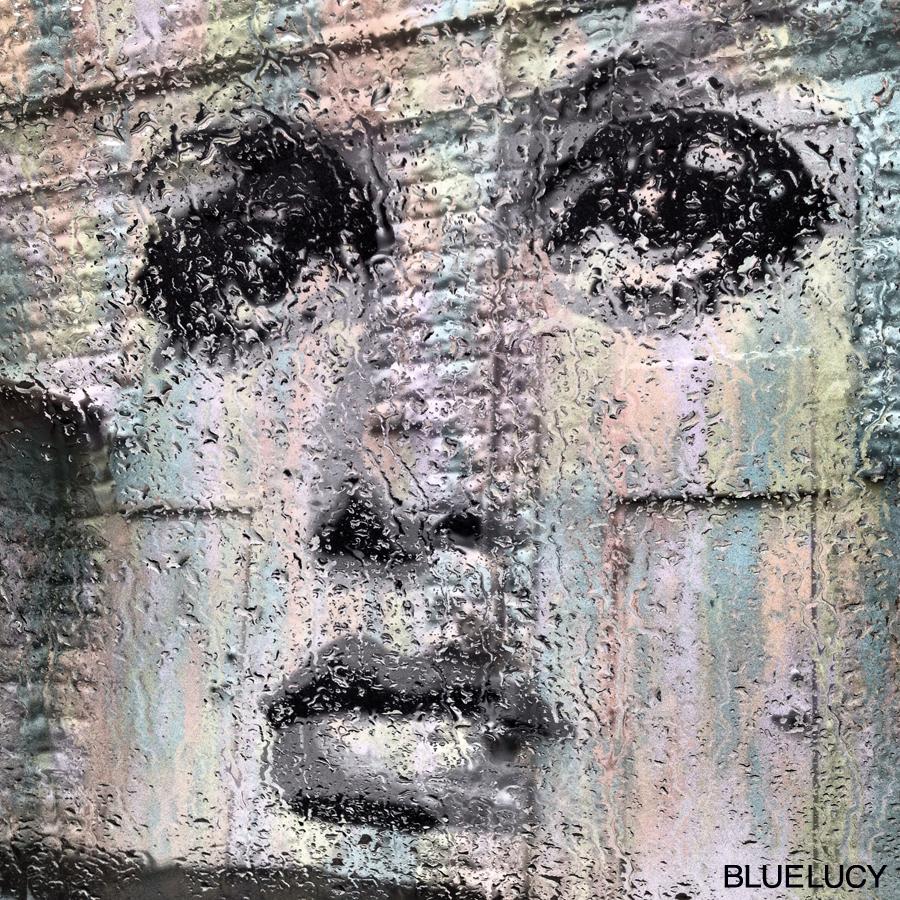 Twiggy_Mural_Bluelucy_Raindrops