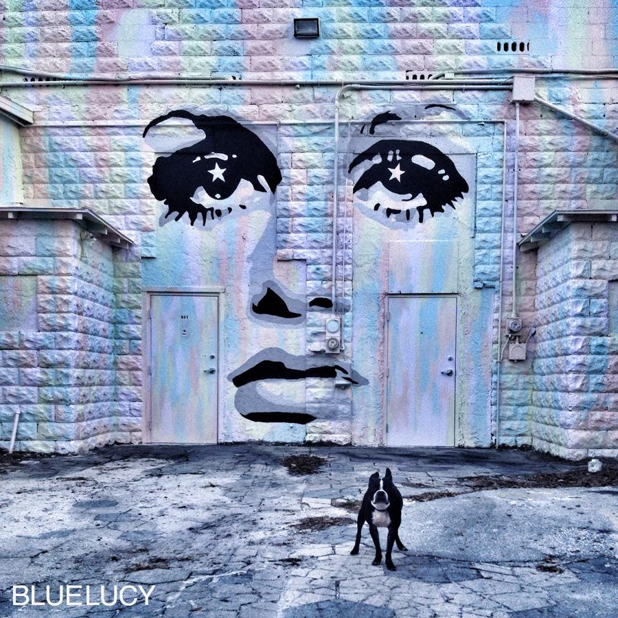 TWIGGY_SONNY_BLUELUCY
