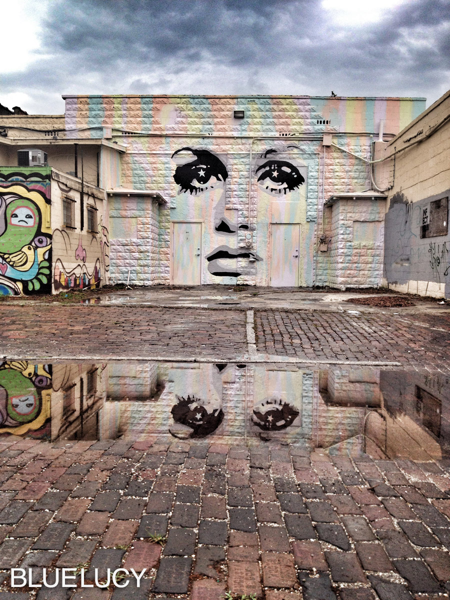 Bluelucy_Mural_Chad_Mize_Twiggy
