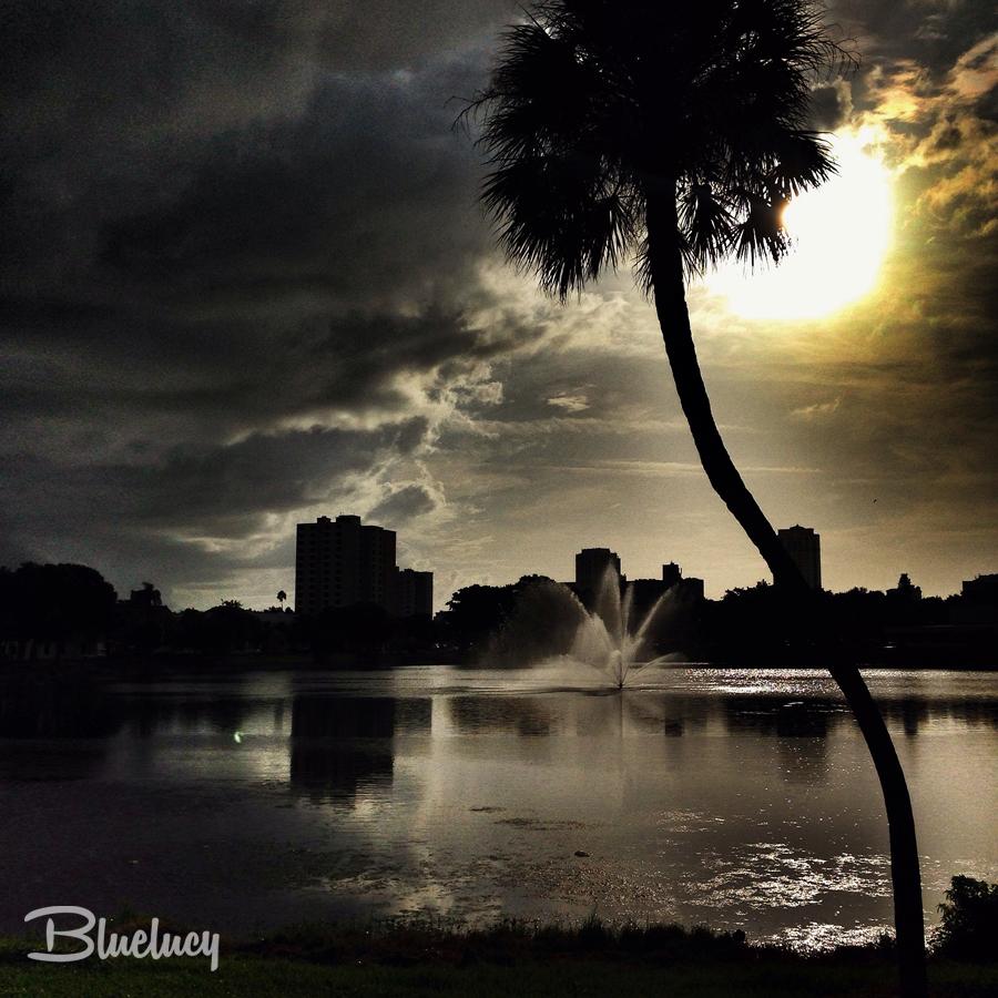 FLORIDUH_BLUELUCY